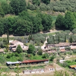 Agriturismo with 12 apartments near the Adriatic Coast