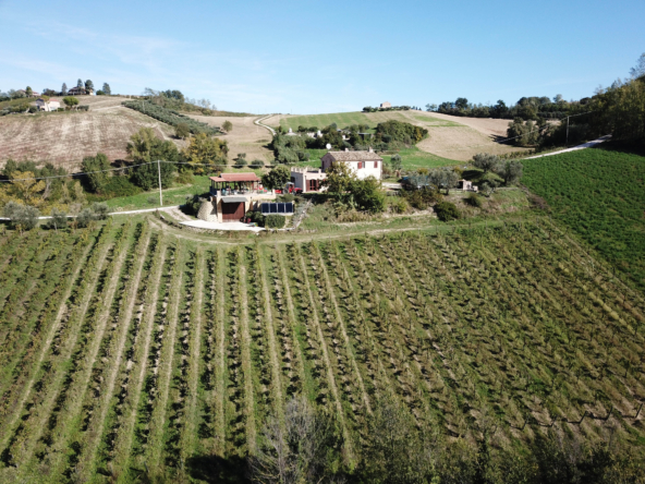 Country house with winery and and olive grove in the Aso Valley