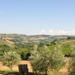 Agriturismo with glamping.