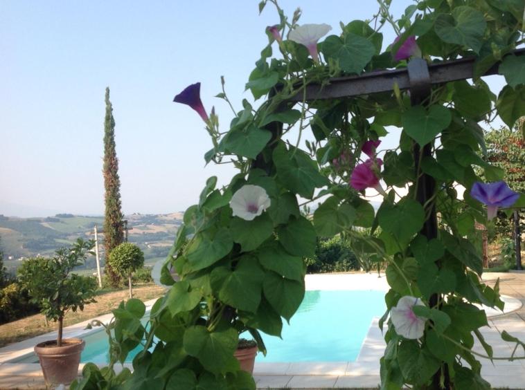 Modern Villa with pool and sea views