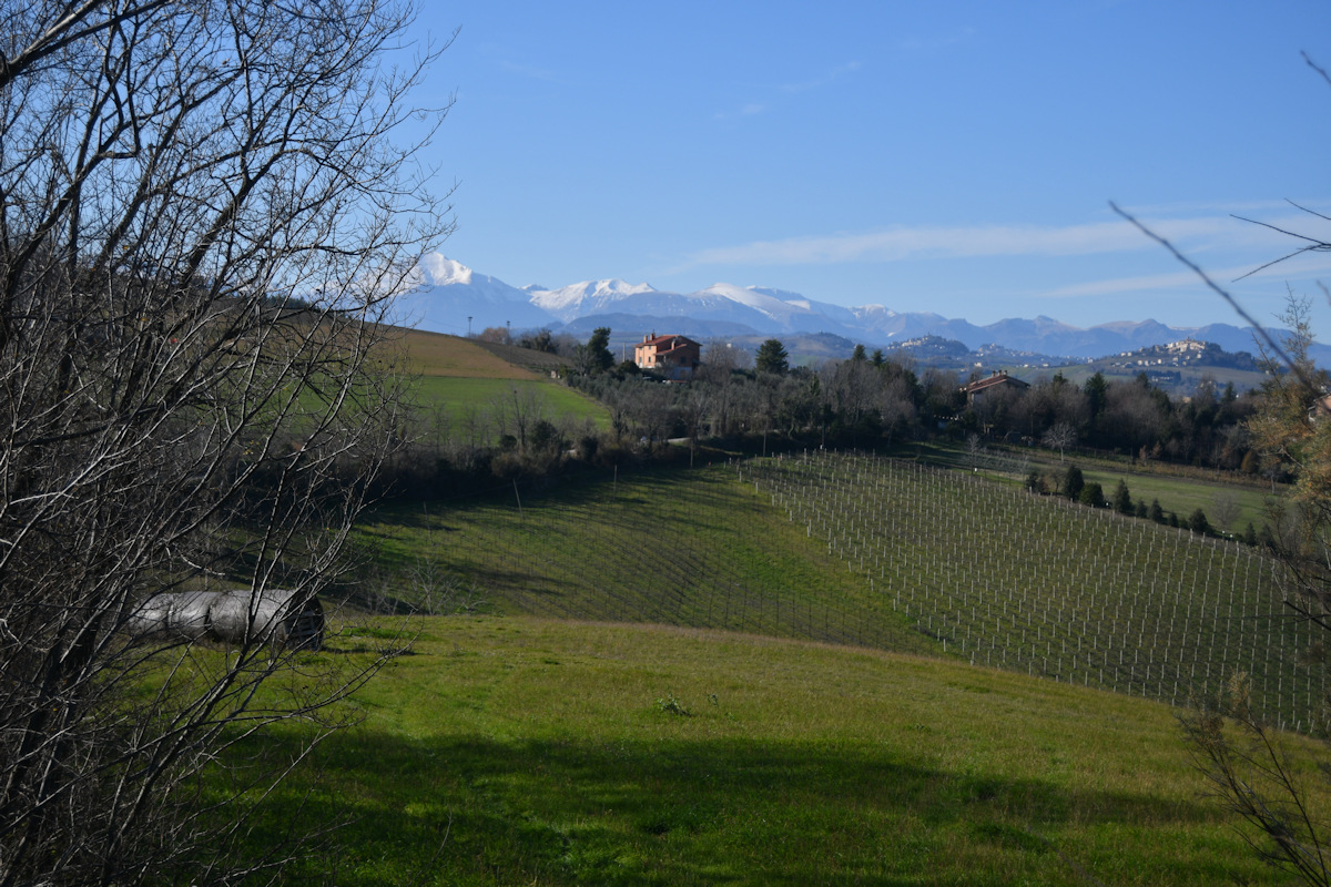 Farmhouse with Sibillini Mountains view