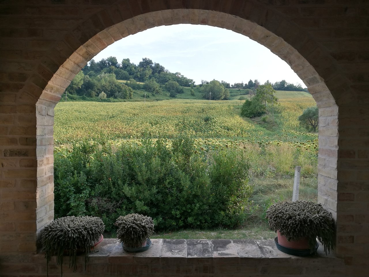 Agriturismo in Le Marche